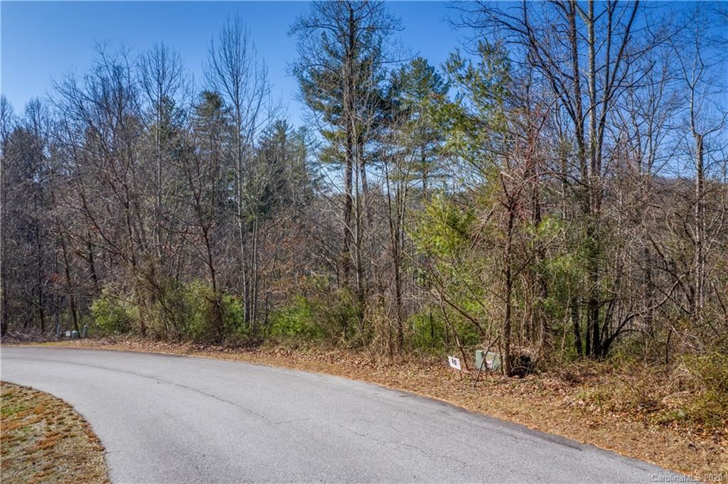 Photo of 188 Willow Place Circle, Hendersonville, NC 28739 (MLS # 3582985)