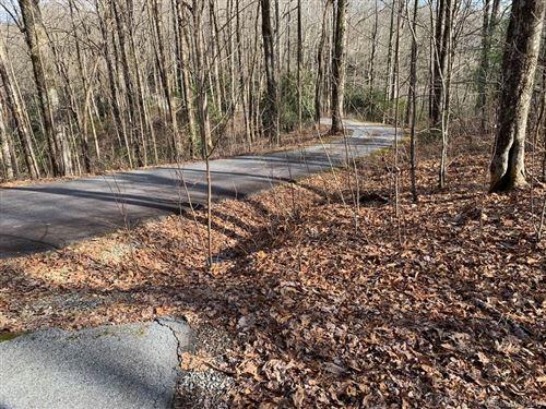 Photo of 74D lightning Path #74D, Brevard, NC 28712 (MLS # 3469998)