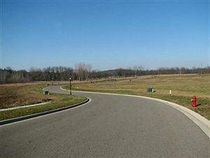 Photo of 412 Buena Vista Drive, Johnstown, OH 43031 (MLS # 213003042)