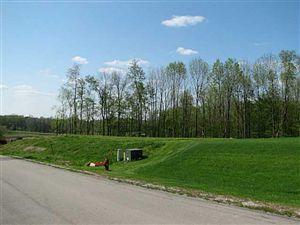 Photo of 371 Buena Vista Drive, Johnstown, OH 43031 (MLS # 213002103)