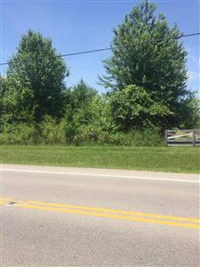 Photo of 0 Johnstown Road, New Albany, OH 43054 (MLS # 219023129)