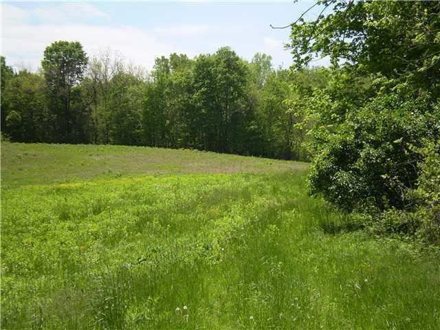 Photo for 2000 Alexander Road, Galena, OH 43021 (MLS # 220024142)