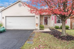 Photo of 353 Meadow Ash Drive, Lewis Center, OH 43035 (MLS # 219039167)