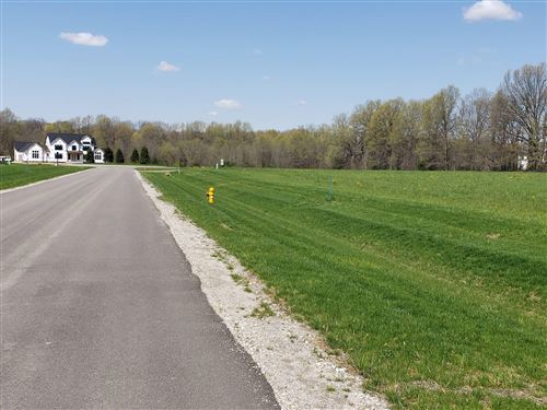 Photo of 6803 Oxford Woods Drive, Sunbury, OH 43074 (MLS # 220028229)