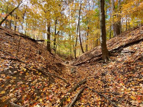 Photo of 6974 Oxford Woods Drive, Sunbury, OH 43074 (MLS # 220028234)