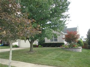 Photo of 284 Kyber Run Circle, Johnstown, OH 43031 (MLS # 219035248)