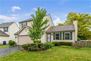 Photo of 4998 Gilwood Drive, Hilliard, OH 43026 (MLS # 219027264)