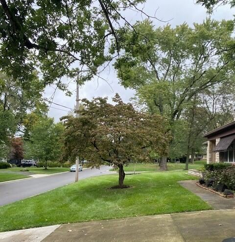 Photo of 285 Beverly Place, Worthington, OH 43085 (MLS # 221039270)