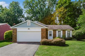 Photo of 4007 Blueberry Hollow Road, Columbus, OH 43230 (MLS # 219033296)