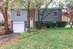 Photo of 1010 Martin Grove Court, Westerville, OH 43081 (MLS # 219041298)