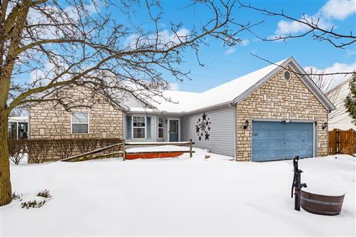 Photo of 1153 Hoover Lake Court, Westerville, OH 43081 (MLS # 221004302)