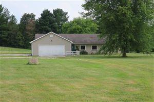 Photo of 201 Downing Road, Delaware, OH 43015 (MLS # 219029313)