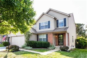 Photo of 7879 Black Willow Drive, Blacklick, OH 43004 (MLS # 219035334)