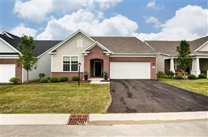 Photo of 12233 Rooster Tail Drive, Pickerington, OH 43147 (MLS # 219028340)