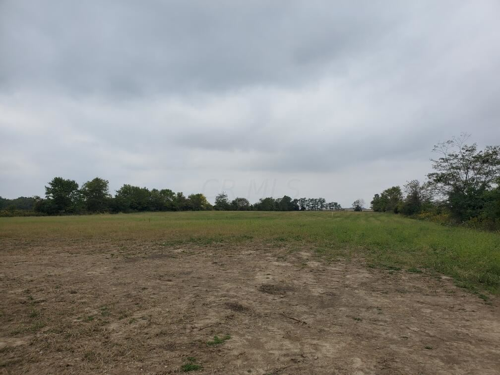 Photo of 7300 Concord Road #Tract 4, Delaware, OH 43015 (MLS # 221038519)