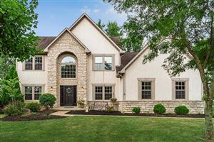 Photo of 7444 Hawksbeard Drive, Westerville, OH 43082 (MLS # 219030546)