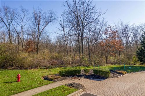 Photo of 476 Welwyn Drive #Lot 4, Powell, OH 43065 (MLS # 220040631)