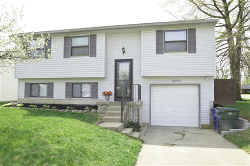 Photo of 4065 Vermilion Avenue, Groveport, OH 43125 (MLS # 221011636)
