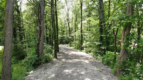 Photo of 0 Babbitt Road, New Albany, OH 43054 (MLS # 220020638)