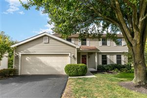 Photo of 6919 Fallen Timbers Drive, Dublin, OH 43017 (MLS # 219039653)