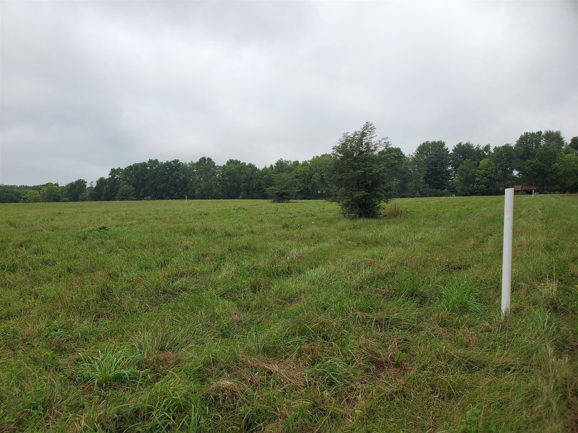 Photo of 0 Freshwater Road #Tract 1, Delaware, OH 43015 (MLS # 221028661)