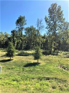 Photo of 213 Olde Park #Lot 4, Granville, OH 43023 (MLS # 219035672)