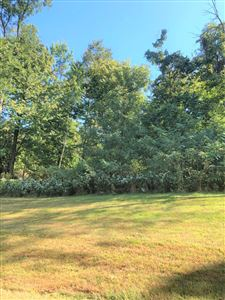 Photo of 201 Olde Park #Lot 1, Granville, OH 43023 (MLS # 219035673)