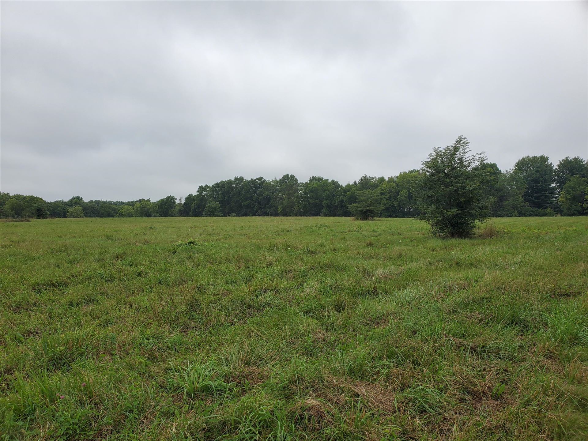 Photo of 0 Freshwater Road #Tract 4, Delaware, OH 43015 (MLS # 221028732)