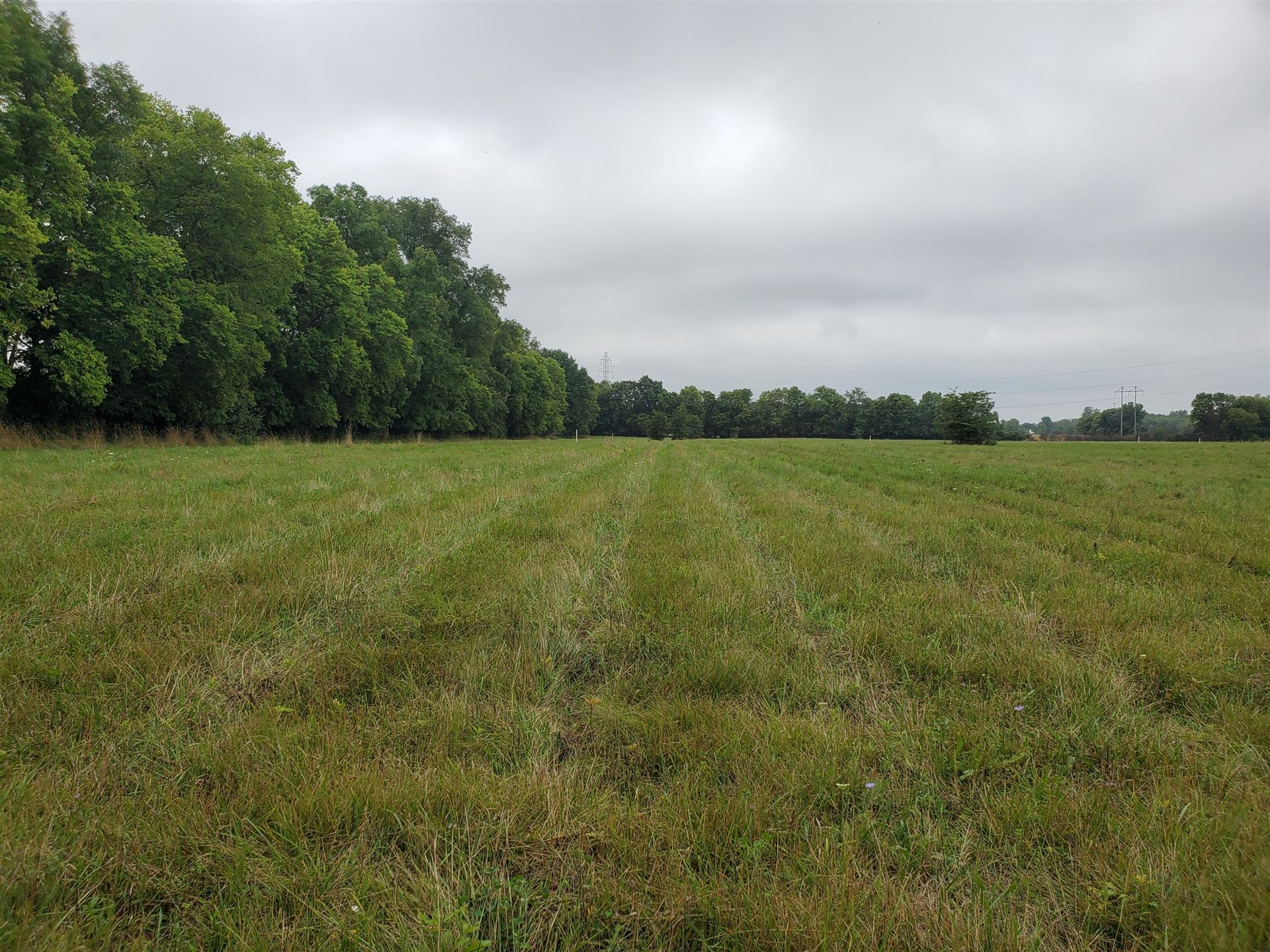 Photo of 0 Freshwater Road #Tract 6, Delaware, OH 43015 (MLS # 221040757)