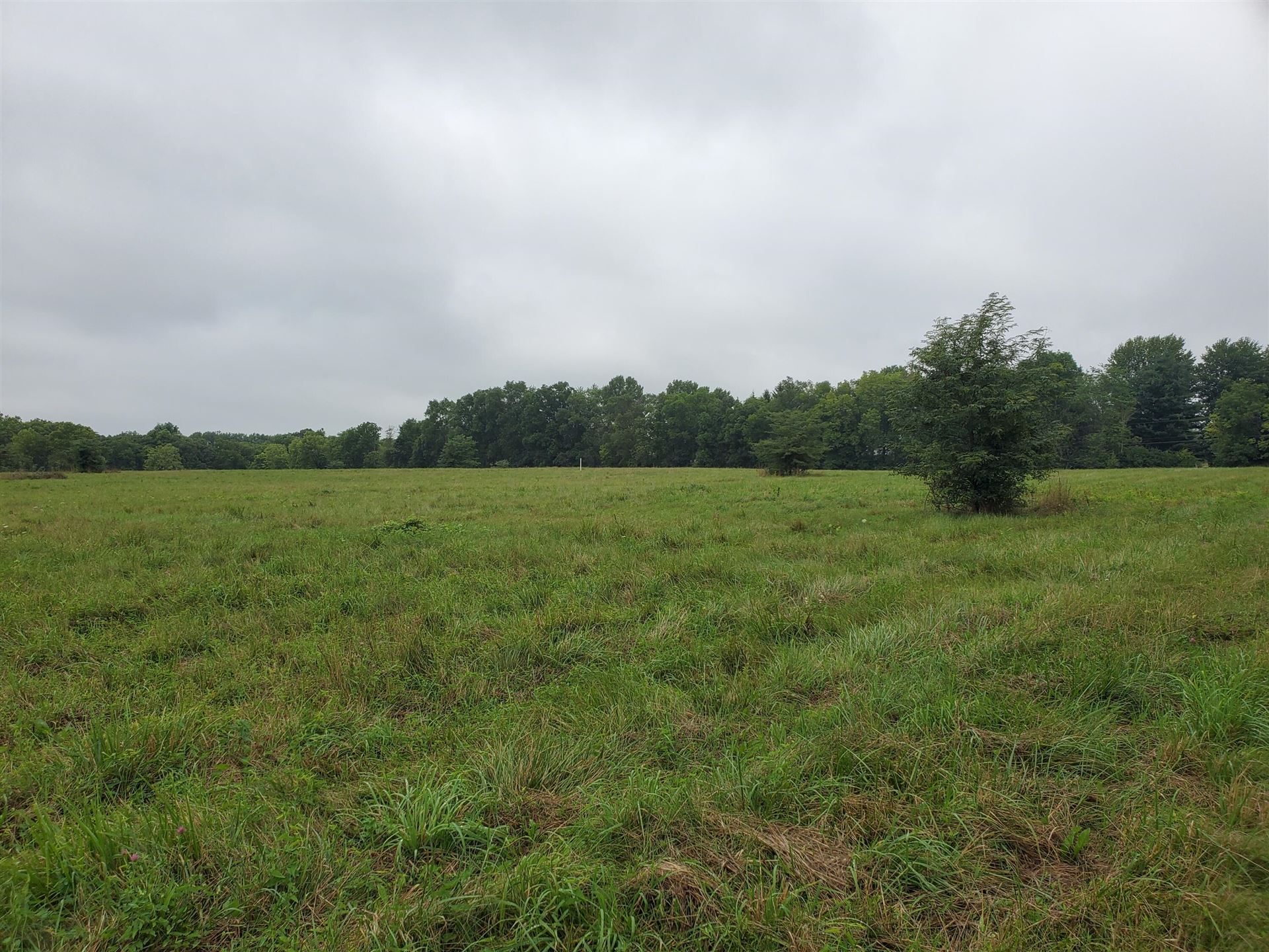 Photo of 0 Freshwater Road #Tract 7, Delaware, OH 43015 (MLS # 221040760)