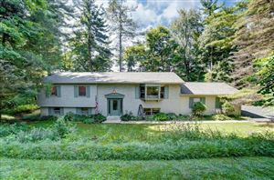 Photo of 291 Pinetree Drive, Granville, OH 43023 (MLS # 219029809)