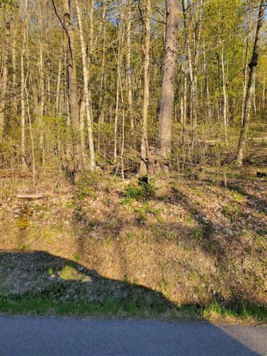 Photo of 0 Spring Hill Road, Newark, OH 43055 (MLS # 220013863)