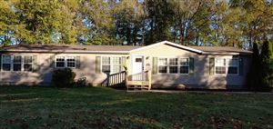 Photo of 220 Darlene Drive NE, Newark, OH 43055 (MLS # 219038864)