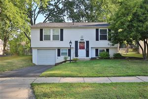Photo of 3584 Makassar Drive, Westerville, OH 43081 (MLS # 219030919)