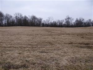 Photo of 3911 Lancaster Road, Granville, OH 43023 (MLS # 219010924)