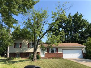Photo of 686 Holly Road, Delaware, OH 43015 (MLS # 219027987)