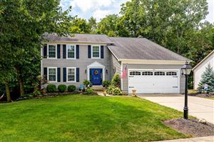 Photo of 261 Tree Haven Avenue, Powell, OH 43065 (MLS # 219030993)