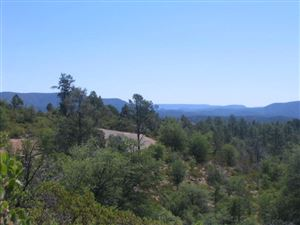 Photo of 2401 E Feather Plume Lane #633, Payson, AZ 85541 (MLS # 77080)