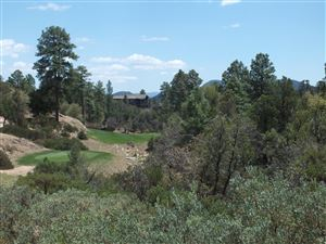 Photo of 1005 N Indian Paintbrush Circle #191, Payson, AZ 85541 (MLS # 78080)