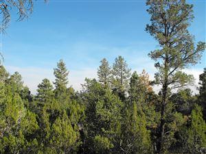 Photo of 3700 Pinehurst Drive #168, Happy Jack, AZ 86024 (MLS # 79128)