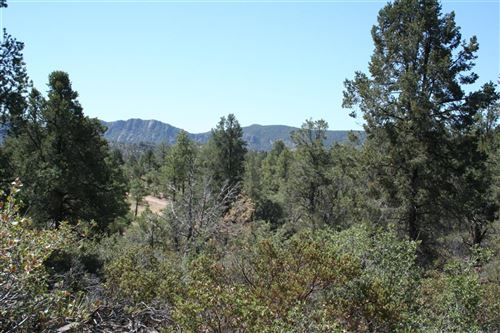 Photo of 503 S Primeval #76, Payson, AZ 85541 (MLS # 82294)