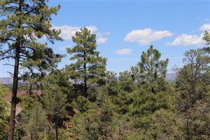 Photo of 1701 E Desert Mimosa Drive #835, Payson, AZ 85541 (MLS # 80331)
