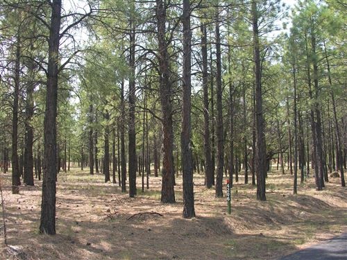 Photo of 4206 Timberline Drive #004, Happy Jack, AZ 86024 (MLS # 83352)