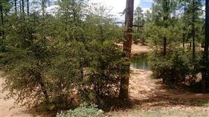 Photo of 1804 E Senna Point #869, Payson, AZ 85541 (MLS # 76421)