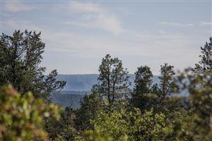 Photo of 311 S Friendly Glen #34, Payson, AZ 85541 (MLS # 81507)