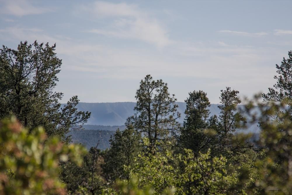 Photo of 311 S Friendly Glen #37, Payson, AZ 85541 (MLS # 81507)