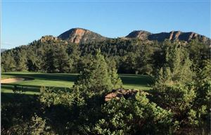 Photo of 2503 E Rim Club Drive #121, Payson, AZ 85541 (MLS # 79514)