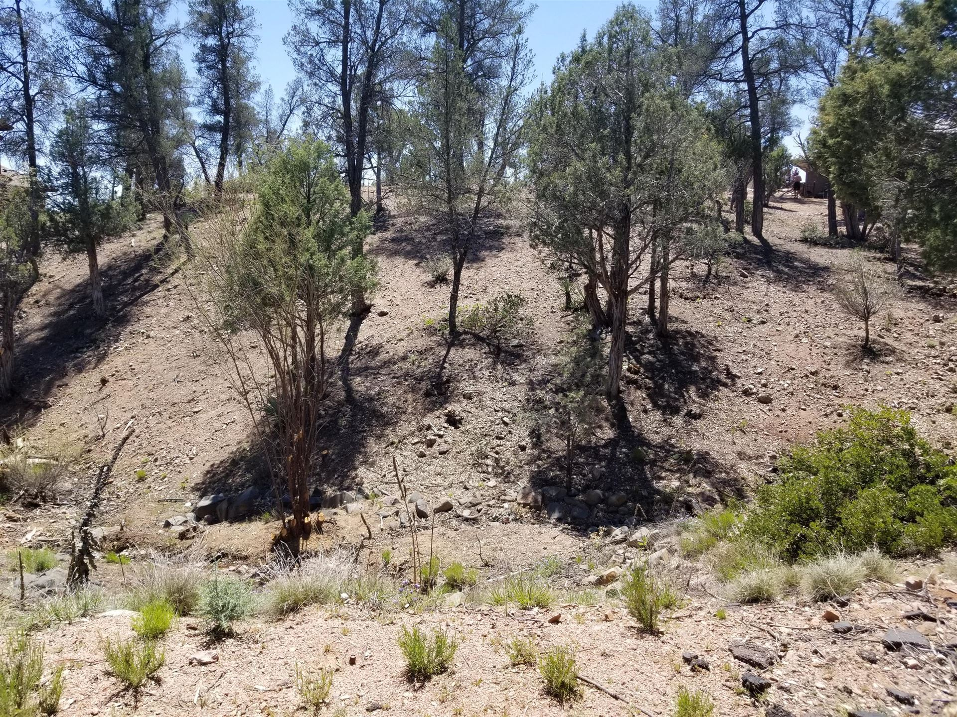 Photo of 1012 N Indian Paintbrush Circle #178, Payson, AZ 85541 (MLS # 82565)
