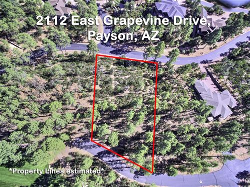 Photo of 2112 E Grapevine Drive #513, Payson, AZ 85541 (MLS # 82569)