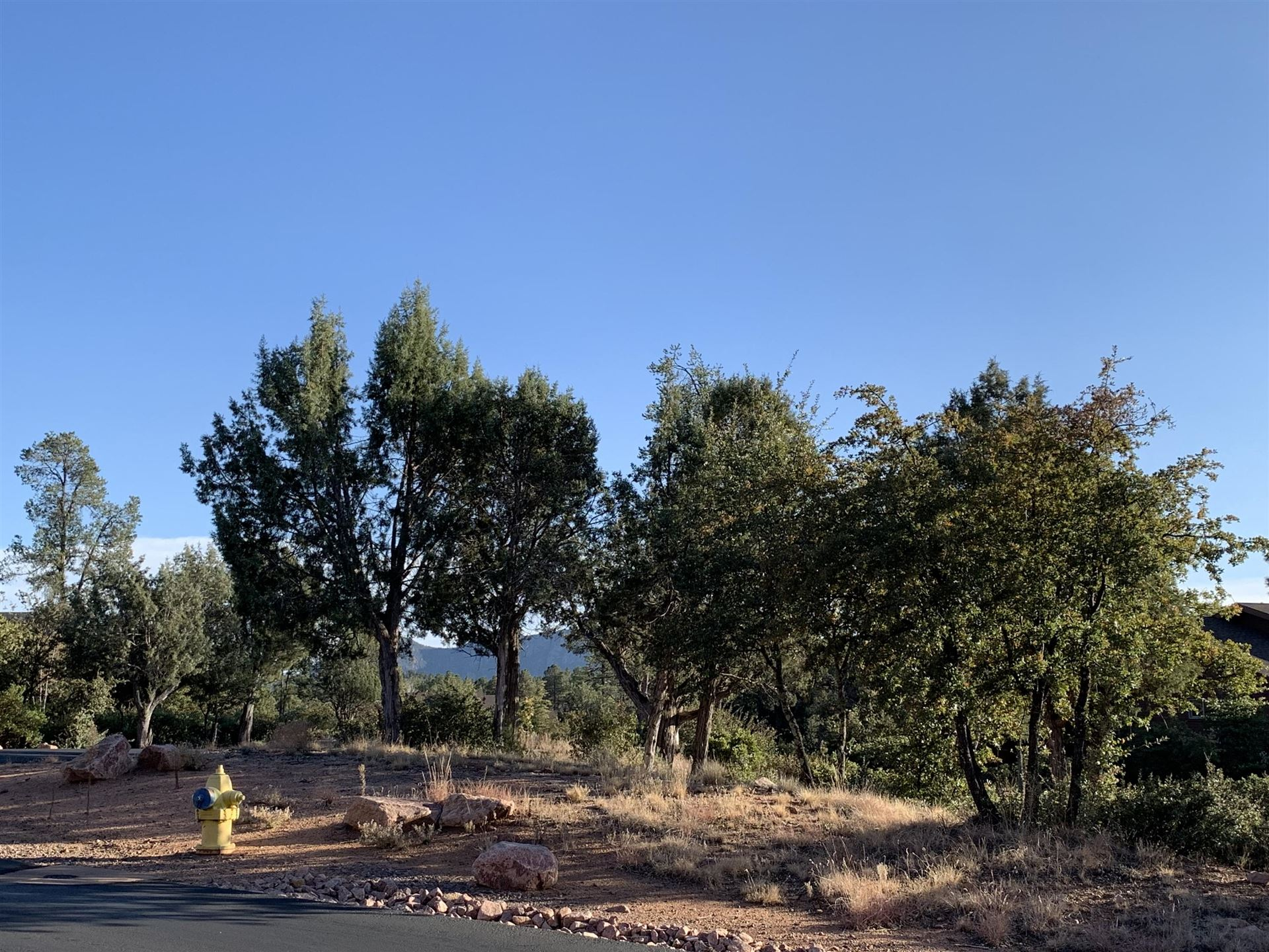Photo of 2301 E Scarlet Bugler Circle #700, Payson, AZ 85541 (MLS # 81589)